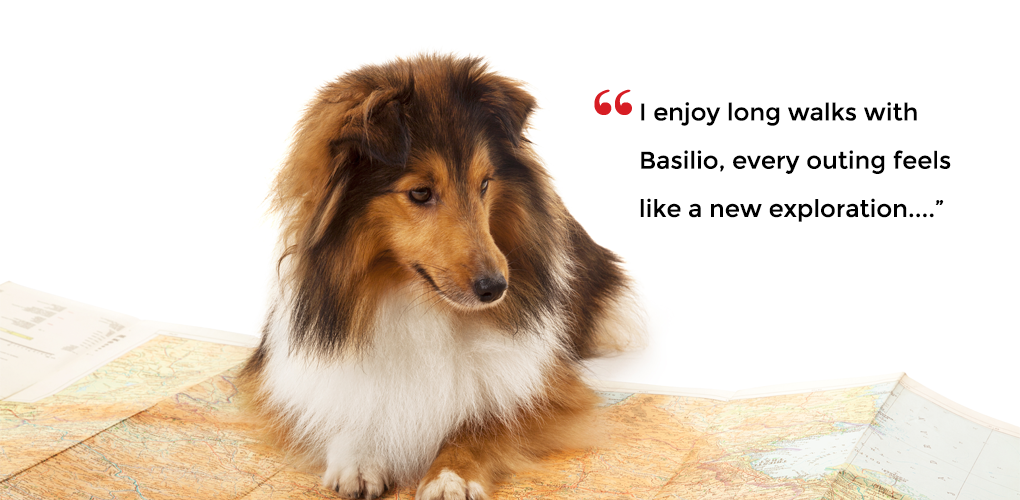 I enjoy long walks with Basilio, every outing feels like a new exploration...